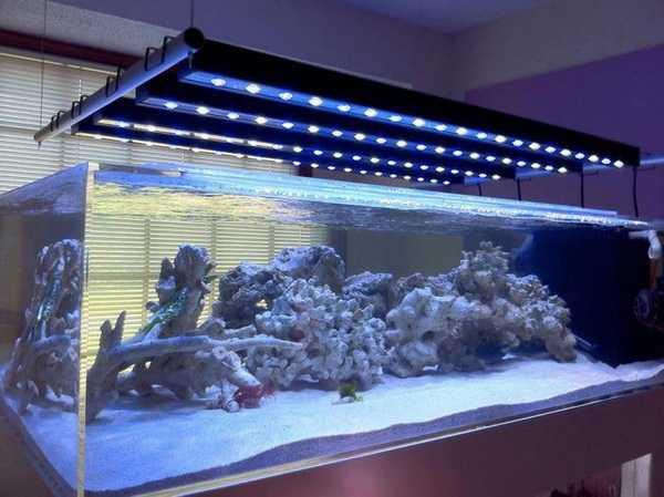 Led светильник для аквариума своими руками фото 988