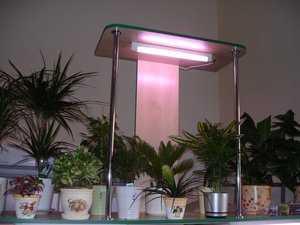 Лампы дневного света для выращивания растений