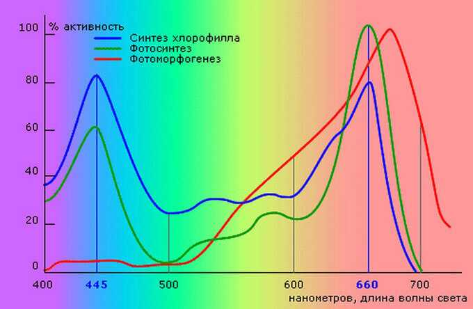 Полезные участки спектра для роста растений
