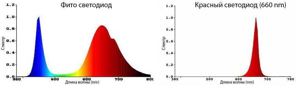 Сравнительный анализ спектров красного светодиода и фито фотодиода