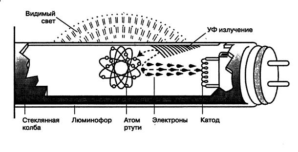 Конструкция люминесцентной трубчатой лампы