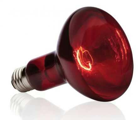 Красная ламповая колба